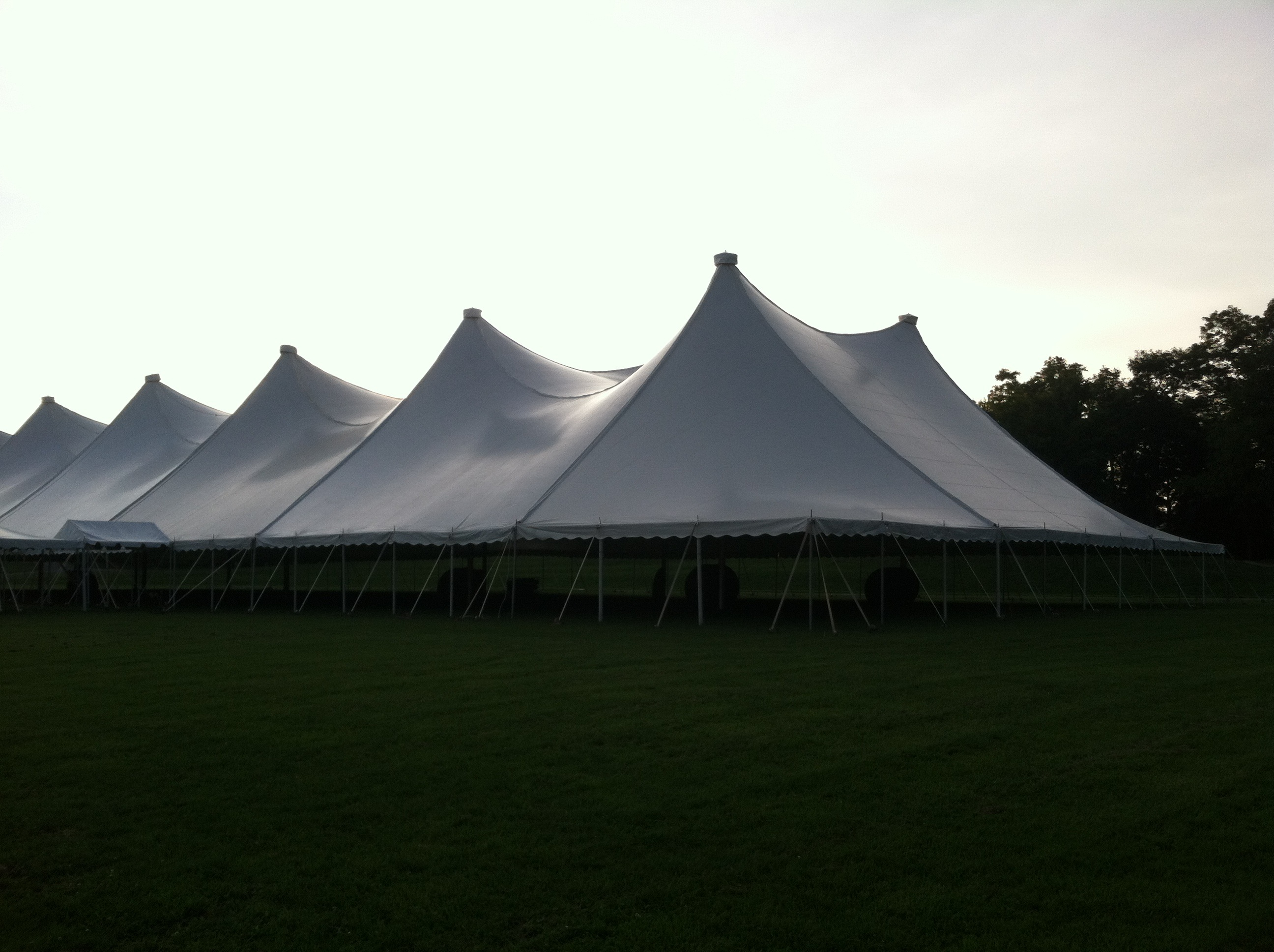 party tents on lawn